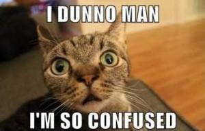 Confused-Cat-Meme-2